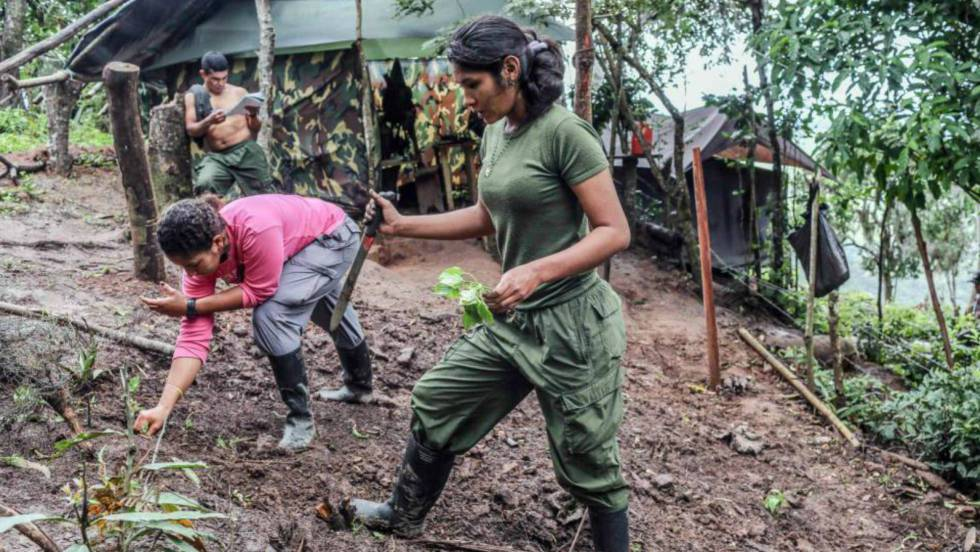 Colombia: represiones, terror, violaciones y esclavismo $. Propiedad agraria, Estado, FARC, ELN. Luchas de clases - Página 6 1482957153_822883_1483012577_noticia_fotograma