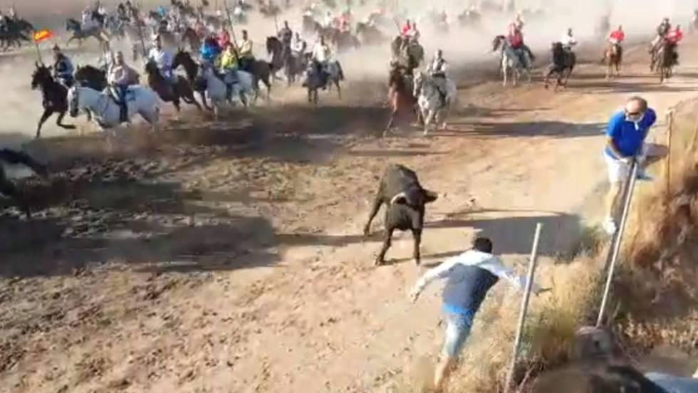Un hombre herido grave en Medina del Campo tras ser corneado en un encierro 1536428981_506525_1536430672_noticia_fotograma