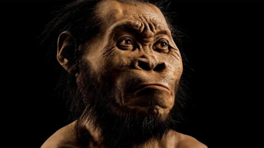 Hallada en África una gran sima de huesos con una nueva especie humana